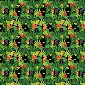 Jungle Watch