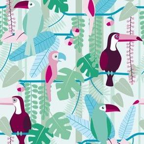 rainforest birds on blue