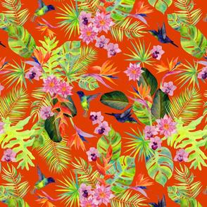 Rainforest Spirit Orange