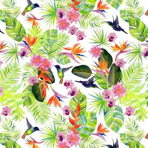 Rainforest Spirit White