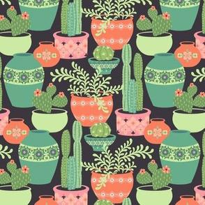Cactus Plants: Gray