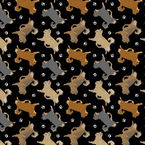 Trotting long coat Chihuahuas and paw prints - black