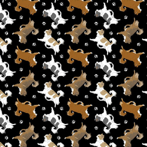 Trotting long coat Chihuahuas and paw prints B - black