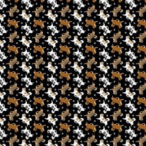 Tiny Trotting long coat Chihuahuas and paw prints B - black