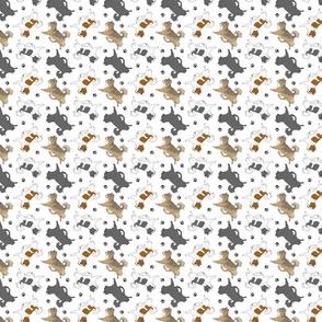 Tiny Trotting long coat Chihuahuas and paw prints C - white