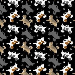 Trotting long coat Chihuahuas and paw prints C - black