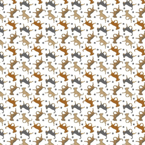Trotting smooth coat Chihuahuas and paw prints - tiny white