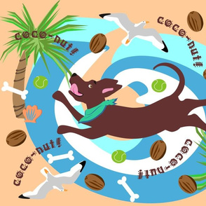 coconut_dog