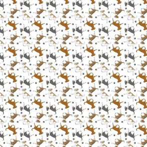 Tiny Trotting smooth coat Chihuahuas and paw prints B - white