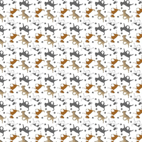 Trotting smooth coat Chihuahuas and paw prints C - tiny white