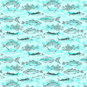 Aqua Fishes