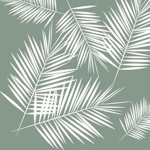 palm leaf palm leaves palm tree - jade smokey green