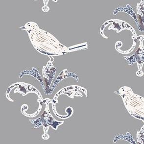 Gray Garden_Bird