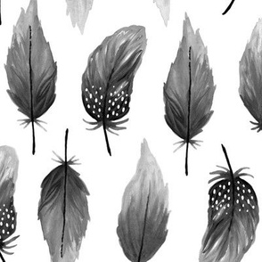 Watercolor feathers black