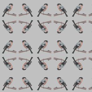 grey_back_ground_bullfinch