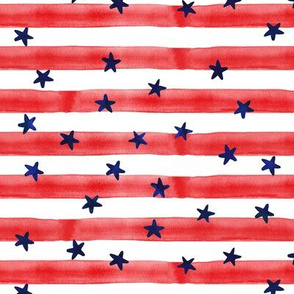 stars and stripes (blue on red)