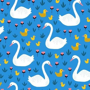 swans and ducks swimming pond on blue