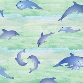dolphinfrolic1