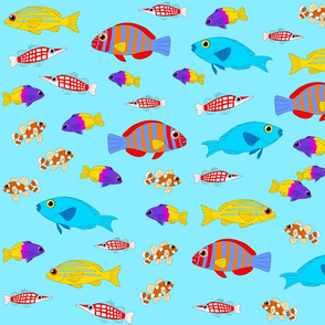Fish Lagoon 2017