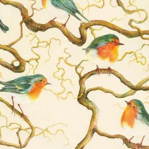 Robin In The Corkscrew