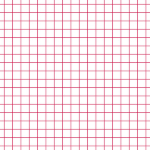 "hot pink windowpane grid 1"" square check graph paper"