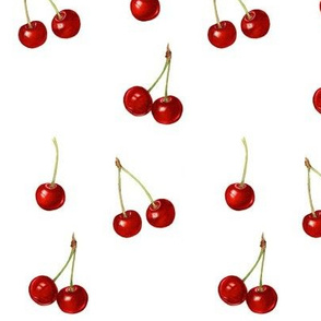 yummy red cherries