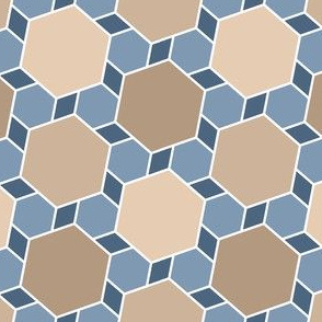 06172554 : hexagon2to1 : natural stone