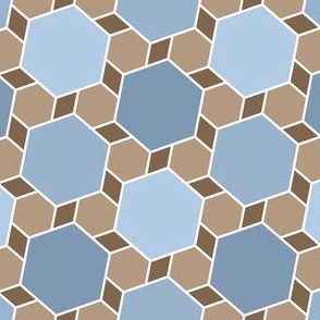 06172555 : hexagon2to1 : natural slate