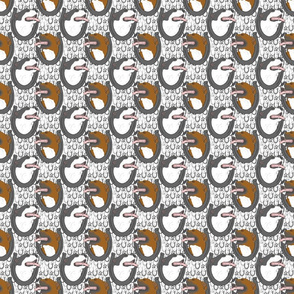 Small American Pit Bull Terrier horseshoe portraits