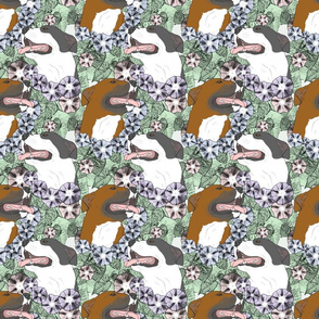 Floral American Pit Bull Terrier portraits