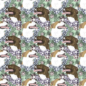 Floral American Pit Bull Terrier portraits B
