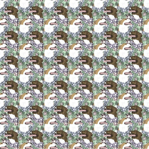 Small Floral American Pit Bull Terrier portraits B