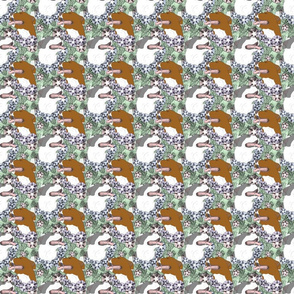 Small Floral American Pit Bull Terrier portraits C