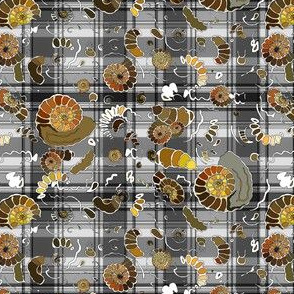 Limestone  extra ammonites in  grey plaid SMALL