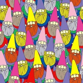 Mister Gnome