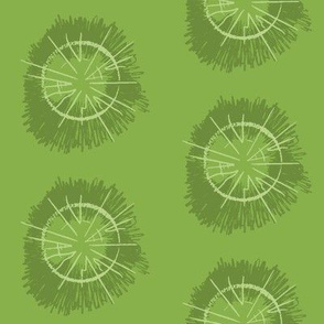 Tree circles_greenery17_pales