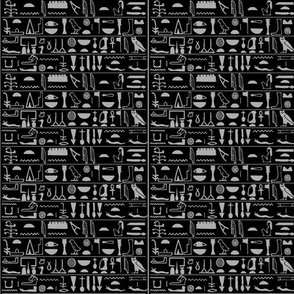 Egyptian Hieroglyphs on black