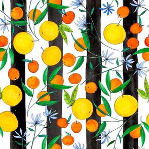 Citrus Stripes (Black)
