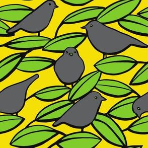 Birds_alt_colour