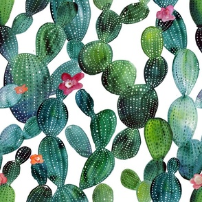 Cactuses green wall large size