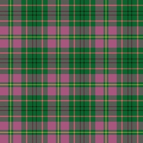 "Taylor family tartan, 6"" high key pink"
