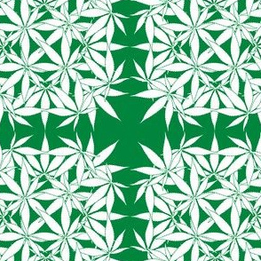 LeafSquare_Cannabis