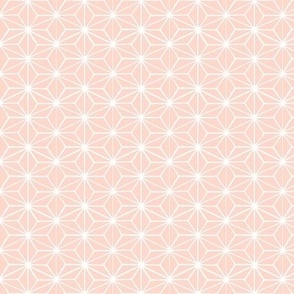 Star Tile on Soft Peach