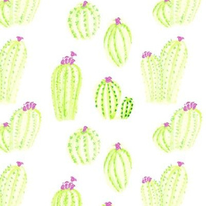 Watercolor Southwest Cactus Succulent Lime Pink_Miss Chiff Designs