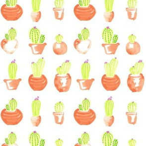 Watercolor Lime Green Cactus || Succulent Southwest Orange Terra Cotta Clay _Miss Chiff Designs