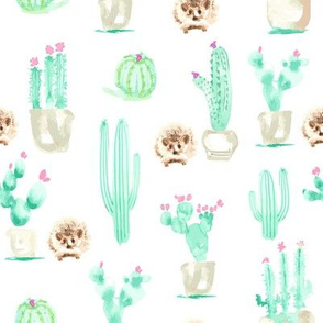 17-15H 8x8 Hedgehog Watercolor || Succulent Cactus Harry Forest Animal Mint Green Tan Taupe_Miss Chiff Designs