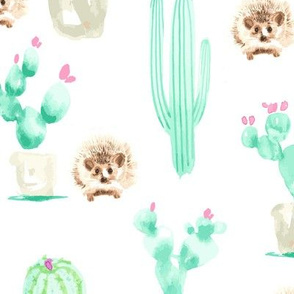 17-15G 13 x13 Hedgehog Watercolor Cactus Harry  Large mint green pink brown _Miss Chiff Designs