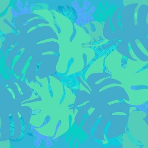Blue and Green Philodendrons +