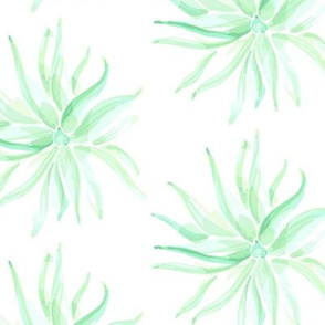 17-15C Watercolor Succulent Jade mint Green  Southwest Floral Botanical large scale _Miss Chiff Designs