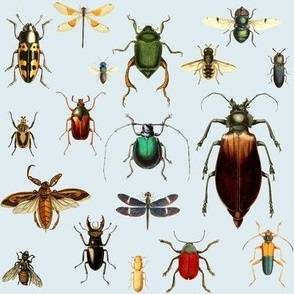 BUGS COLLECTION / VINTAGE / BLUE